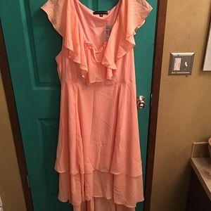 Torrid NWT 20 dress